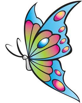 Butterfly Free Vector / 4Vector