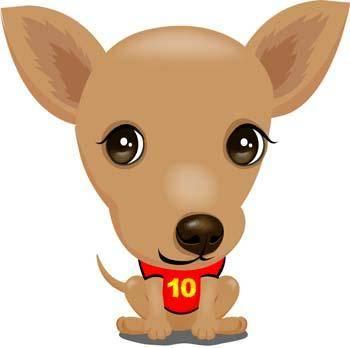 Terrier Dog