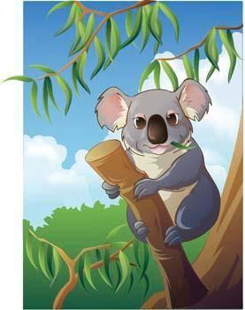 free vector Koala 3