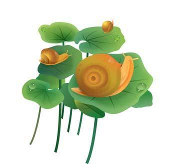 free vector Snail 7