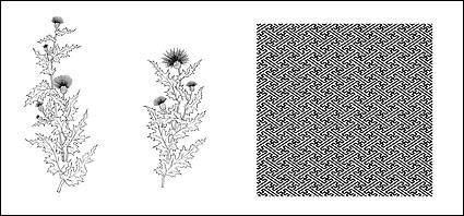 Line drawing of flowers -10