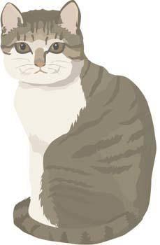 Cat vector 30