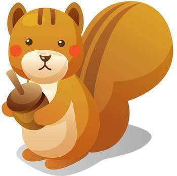 Squirrel Vector 5
