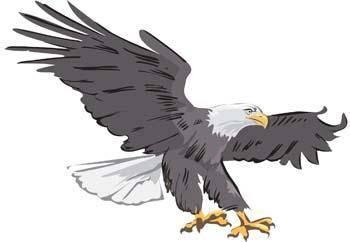 Eagle vector 1