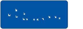 free vector Bird on the sky 1
