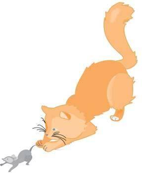 Cat vector 39