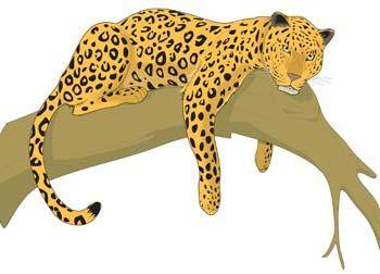 free vector Leopard 2
