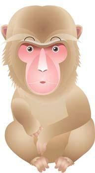 free vector Monkey 18