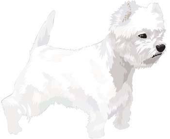 free vector Terrier 16