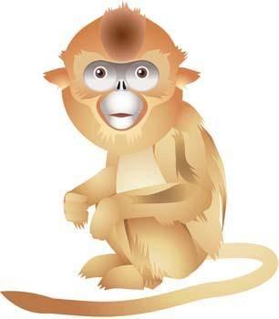 free vector Monkey 14