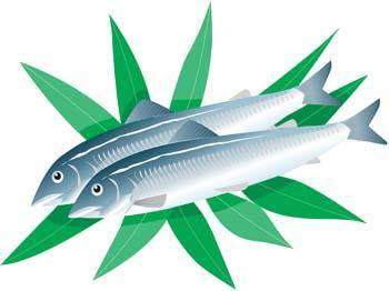 Fish Vector 2