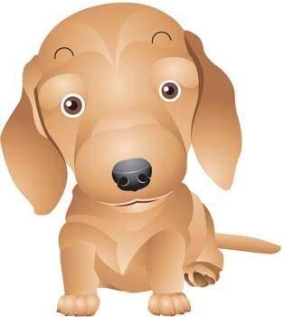 Anak Anjing 2