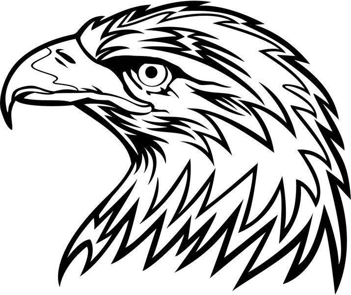 free vector Eagle Head Vector