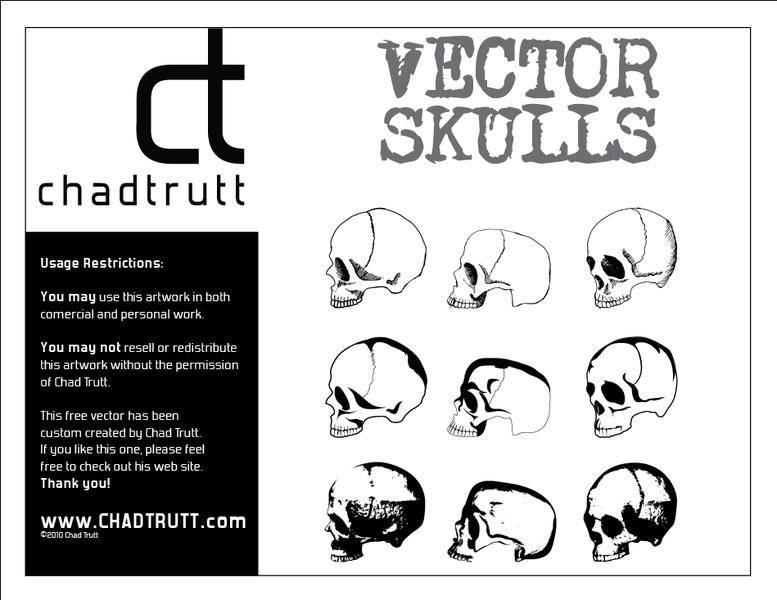 free vector Human Skulls