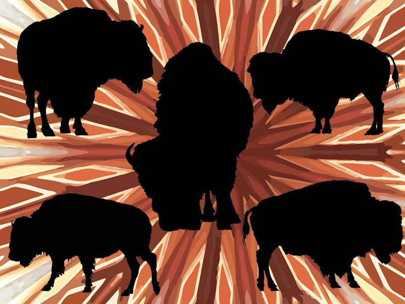 free vector 5 American Buffalo Vector Silhouettes (ai)