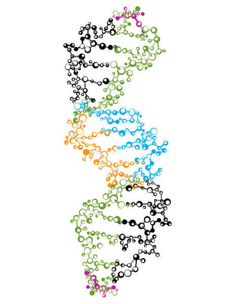 free vector DNA Strand