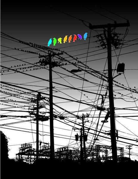 free vector Bird Color