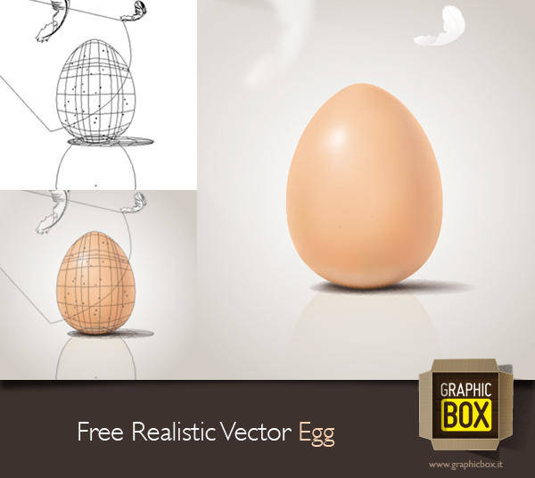 Free Realistic Vector Egg