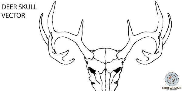 free vector Deer Skull Vector