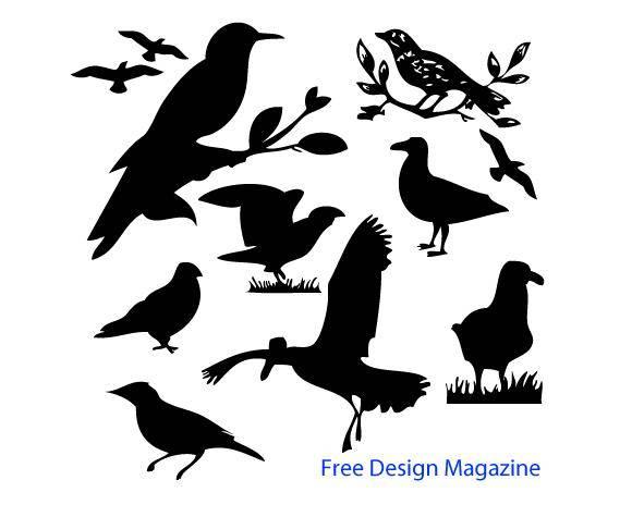 free vector Vector Birds